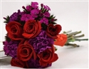 Red-Purple 43-piece