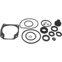 Sierra_47 18-2694 433550 Je Gearcase Seal Kit