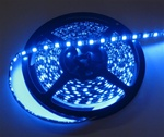 Sapphire Blue LED Flex Strips -12vdc, IP68 WP, Double Density, White, High Output - 5M Spool