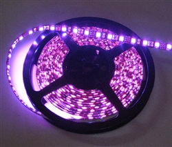 Hot Pink LED Flex Strips Ribbon Lights -12vdc, Waterproof, 300 LED 5050, Pink, High Output - 5M Spool