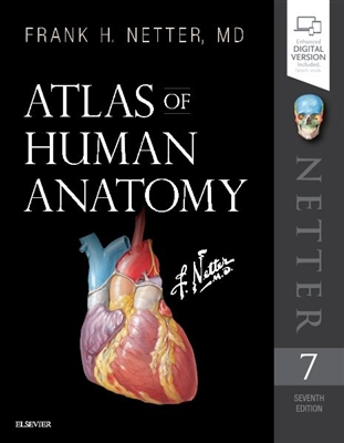 Atlas of Human Anatomy Frank Netter