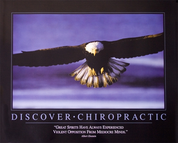 Chiropractic Eagle Poster, Chiropractic Wall Art, Chiropractic Posters
