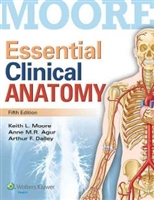 Essential Clinical Anatomy 5th Edition