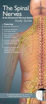 Illustrated Pocket Anatomy: Spinal Nerves and the Autonomic Nervous System Study Guide