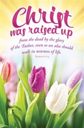Bulletin-Christ Was Raised Up: 0730817356013