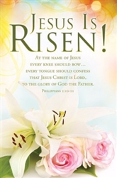 Bulletin-Jesus Is Risen! : 0730817356037