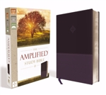 Amplified Study Bible (Revised): 9780310446521