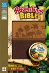 NIV Adventure Bible (Full Color): 9780310729693