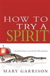 How To Try A Spirit by Garrison: 9781603749602