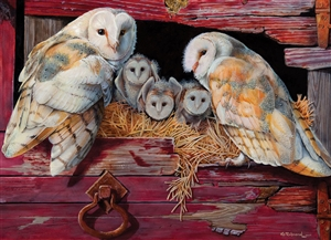 80052 1000pc Barn Owls jigsaw puzzle | Cobble Hill Puzzle Company