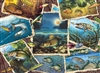 1000pc Fish Pics jigsaw puzzle by Cobble Hill Puzzle Co.