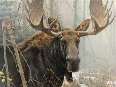 500pc Bull Moose jigsaw puzzle | Cobble Hill Puzzle Company