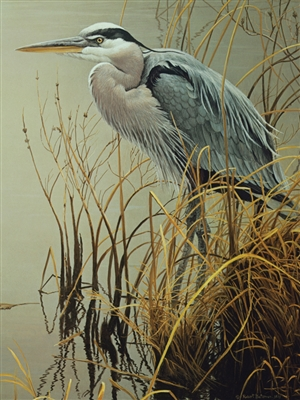 500pc Great Blue Heron jigsaw puzzle | Cobble Hill Puzzle Company