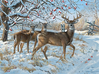 500pc Winter Deer jigsaw puzzle | Cobble Hill Puzzle Company