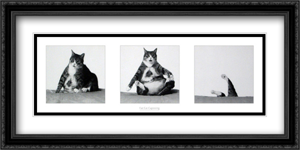 Fat Cat Capsizing 2x Matted 29x15 Large Gold or Black or Gold Ornate Framed Art Print by Richard Watherwax