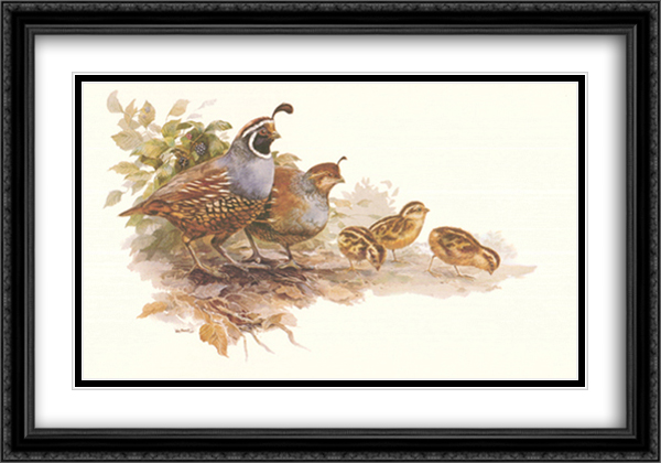 Quail Family 2x Matted 27x18 Large Gold or Black or Gold Ornate Framed Art Print by Rick Bennett