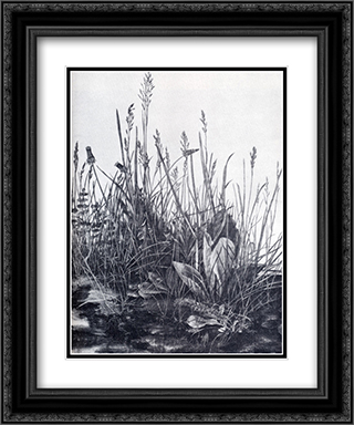 The So-Called Great Piece Of Turf 20x24 Black or Gold Ornate Framed and Double Matted Art Print by Albrecht Durer