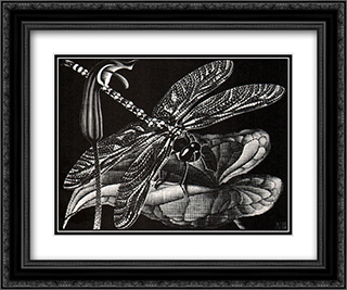 Dragonfly 24x20 Black or Gold Ornate Framed and Double Matted Art Print by M.C. Escher