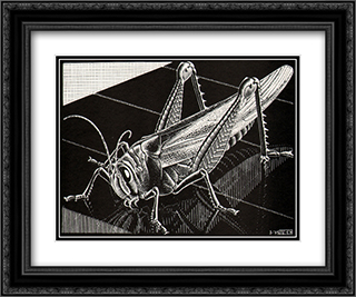 Grasshopper 24x20 Black or Gold Ornate Framed and Double Matted Art Print by M.C. Escher