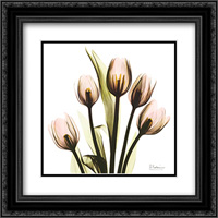 Crystal Flowers X-Ray, Tulip Bouquet 2x Matted 16x16 Black Ornate Framed Art Print by Albert Koetsier
