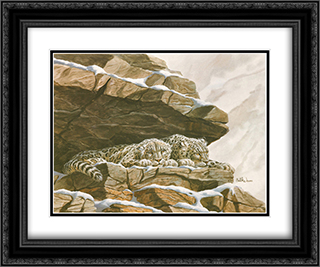 Snow Leopards 2x Matted 20x24 Black Ornate Framed Art Print by Don Balke