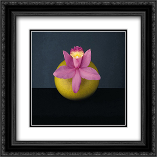 Orchid, 1987 2x Matted 20x20 Black Ornate Framed Art Print by Robert Mapplethorpe