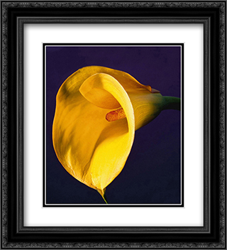 Calla Lily, 1987 2x Matted 20x24 Black Ornate Framed Art Print by Robert Mapplethorpe