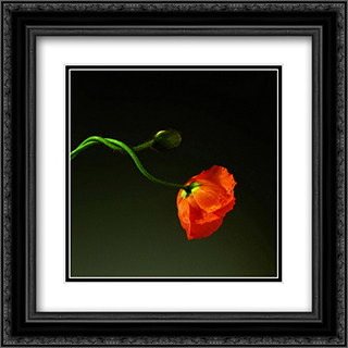 Poppy, 1988 2x Matted 20x24 Black Ornate Framed Art Print by Robert Mapplethorpe