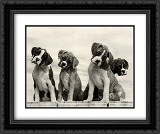 Wonder 2x Matted 24x20 Black Ornate Framed Art Print by Sharon Beals