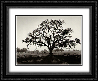 Oak Tree, Sunrise 2x Matted 24x20 Black or Gold Ornate Framed Art Print by Ansel Adams