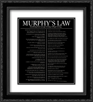 Murphy's Law 2x Matted 20x24 Black or Gold Ornate Framed Art Print