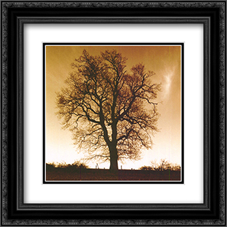 Sepia Trees I 2x Matted 12x24 Black or Gold Ornate Framed Art Print by Mark Baker