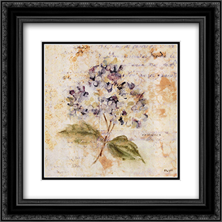 White Washed Hydrangea 2x Matted 16x16 Black or Gold Ornate Framed Art Print by Cheri Blum