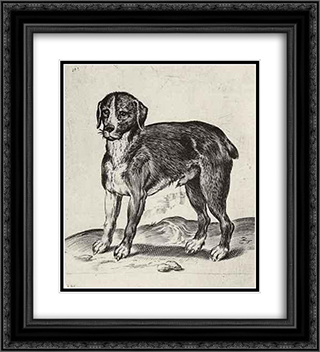 Dog 20x22 Black Ornate Framed and Double Matted Art Print by Agostino Carracci
