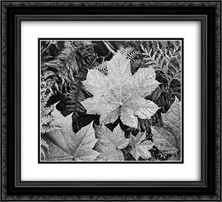 In Glacier National Park 22x20 Black or Gold Ornate Framed and Double Matted Art Print by Ansel Adams