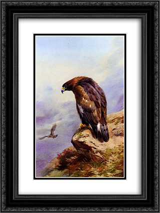 A Golden Eagle 18x24 Black or Gold Ornate Framed and Double Matted Art Print by Archibald Thorburn