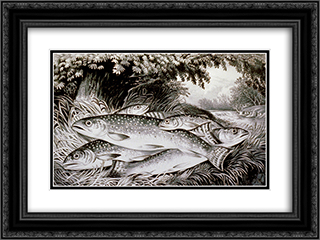 American brook trout 24x18 Black or Gold Ornate Framed and Double Matted Art Print by Currier and Ives