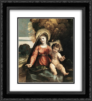 Madonna and Child 20x22 Black or Gold Ornate Framed and Double Matted Art Print by Dosso Dossi