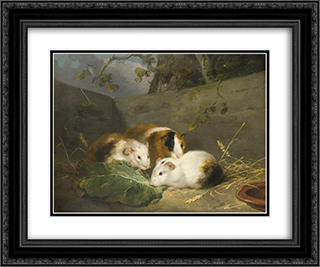 Guinea Pigs 24x20 Black or Gold Ornate Framed and Double Matted Art Print by George Morland