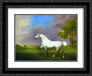 A Grey Horse 24x20 Black or Gold Ornate Framed and Double Matted Art Print by George Stubbs