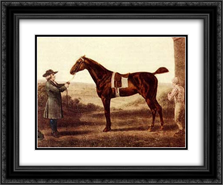 Diomed 24x20 Black or Gold Ornate Framed and Double Matted Art Print by George Stubbs