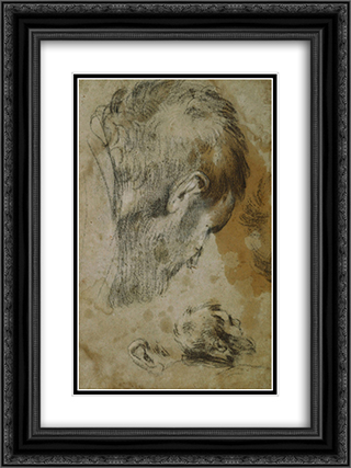 Two Studies of the Head of a Bearded Man 18x24 Black or Gold Ornate Framed and Double Matted Art Print by Jacopo Bassano