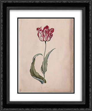 Tulip 20x24 Black or Gold Ornate Framed and Double Matted Art Print by Judith Leyster