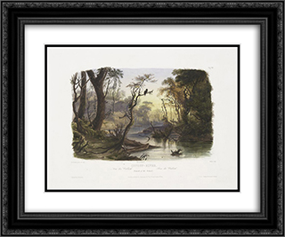 Cutoff River, Branch of the Wabash, plate 8 from Volume 1 of 'Travels in the Interior of North America' 24x20 Black or Gold Ornate Framed and Double Matted Art Print by Karl Bodmer