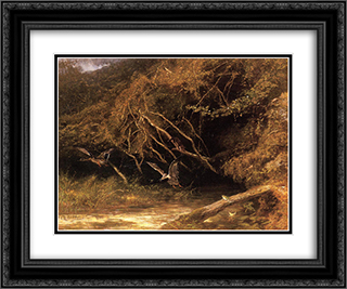 Forest with Ducks and Frogs 24x20 Black or Gold Ornate Framed and Double Matted Art Print by Karl Bodmer