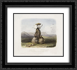 Magic Pile Erected by the Assiniboin Indians, plate 15 from Volume 1 of 'Travels in the Interior of North America' 22x20 Black or Gold Ornate Framed and Double Matted Art Print by Karl Bodmer