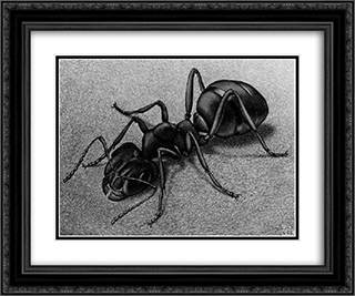 Ant 24x20 Black or Gold Ornate Framed and Double Matted Art Print by M.C. Escher