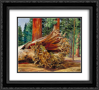 A Fallen Giant, Calaveras Grove, California 22x20 Black or Gold Ornate Framed and Double Matted Art Print by Marianne North