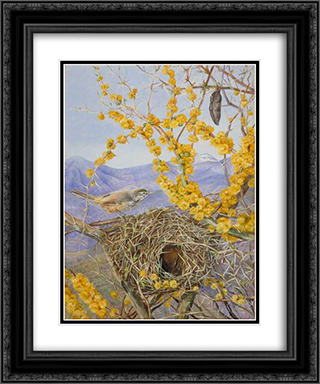 Armed Bird's Nest in Acacia Bush, Chile 20x24 Black or Gold Ornate Framed and Double Matted Art Print by Marianne North