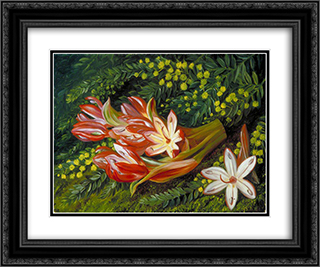 Australian Spear Lily and an Acacia 24x20 Black or Gold Ornate Framed and Double Matted Art Print by Marianne North